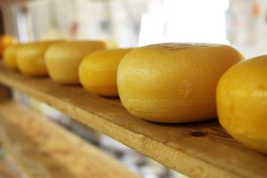 cheese-2785__340